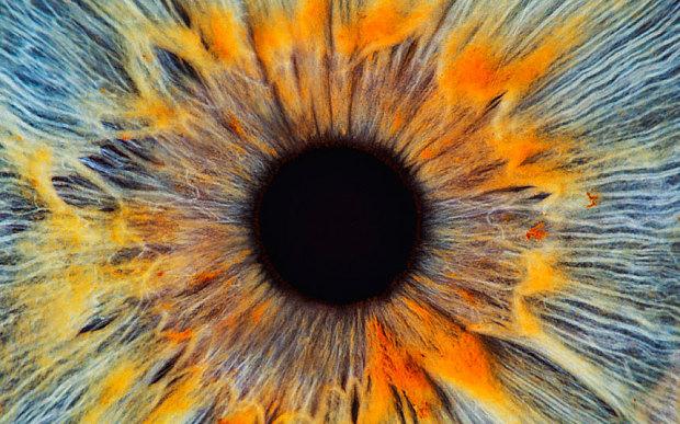 eye_3048269b
